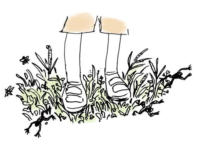 えりの足もとの草むら。カエルがとんでいる