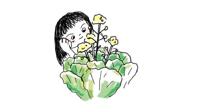 キャベツの花をながめるえり