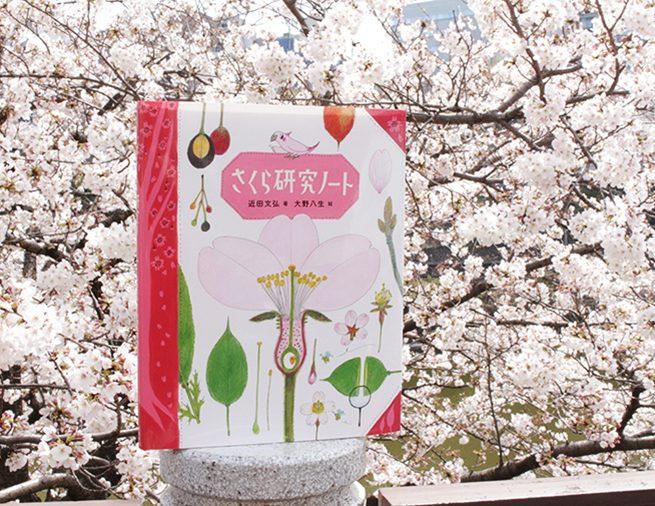 春はもちろん、1年を通して見どころいっぱい! さくらの木をもっと好きになる『さくら研究ノート』