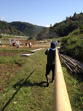竹をはこぶ大人。