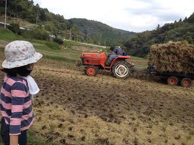 トラクターに山と積まれた藁の束。